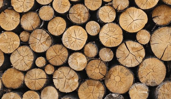 Loan turns the heat on wood recycling social enterprise