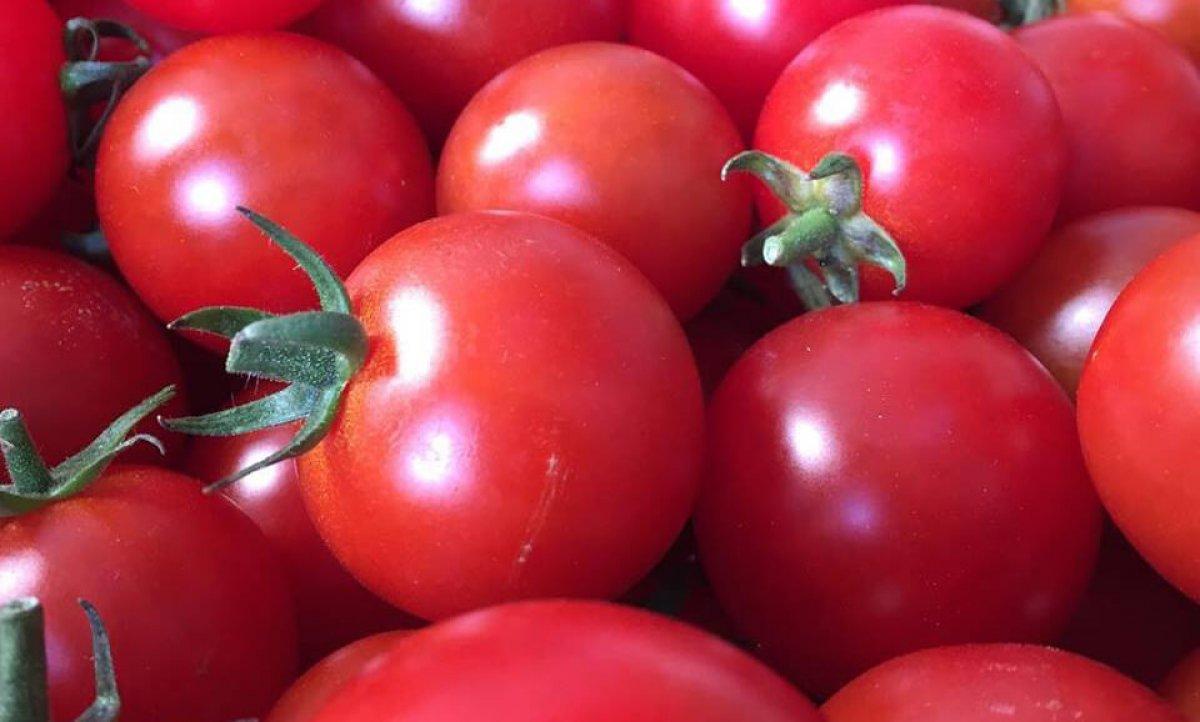 vegBox-tomatoes